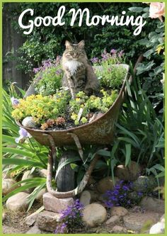 Garden Landscaping Upcycled garden ideas - wheelbarrow planter - Gardening is a great way to repurpose items and turn them into fantastic container gardens. Read on for our top 10 upcycled garden ideas. Wheelbarrow Planter, Chair Planter, Garden Cottage, Farmhouse Garden, Rustic Cottage, Garden Planters, Balcony Garden, Recycled Planters, Wall Planters