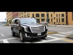 Boston Airport Transportation by Patriots Limousine Serval Cats, Youtube Cats, Airport Transportation, Limo, In Boston, Taxi, Patriots, Peanut Butter, Key