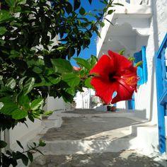 ~ Amorgos, Greece ~