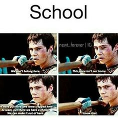 graduation memes True that. Those buggers trapped us into a shuck situation which is school and we all must make it through Maze Runner Funny, Maze Runner Thomas, Maze Runner Cast, Maze Runner Movie, Maze Runner Quotes, Maze Runner Trilogy, Maze Runner Series, Dylan O'brien, Funny Texts