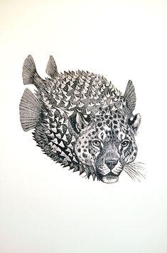 Blowfisch.Jaguar TBB Meer V004