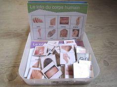 Loto sur le corps humain                                                       …