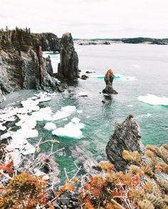 Newfoundland Part II: Bonavista Peninsula — Mallory Jemima Stanton Newfoundland Canada, Newfoundland And Labrador, Fogo Island Inn, Canadian Travel, Canadian Rockies, East Coast Travel, Prince Edward Island, Travel Goals, Adventure Travel