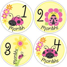 baby month stickers 38 ladybug monthly age by digitaldoodlebug, $11.00