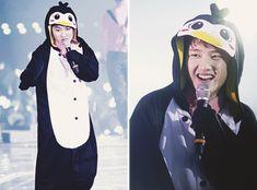 Kyungsoo the penguin