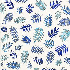 Blue ferns and light. Now available on stationery cards and cell phone cases and skins.  #wonderwakes lacelit.com