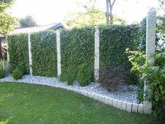 Efeuhecke an Granitstelen - Mobilane Fertighecke® - Pflanzfertige Heckenelemente - Fertiger Sichtschutz - Garten Bronder©