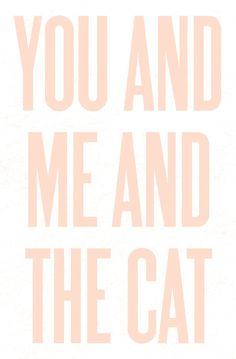 you and  me and  the cat