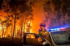 Perth, Australia A firefighter monitors a bushfire in the eastern suburbs of Perth Australian Bush, Australian Open, Bushfires In Australia, Weird And Wonderful, Natural Disasters, Top Photo, Photojournalism, The Guardian, Firefighter
