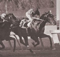 The Bahamas Stakes was an American Thoroughbred horse race run annually in January at Hialeah Park Race Track in Hialeah, Florida.