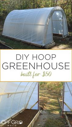 Greenhouse Farming is the process of cultivating crops and vegetable. If you have a greenhouse or are considering setting up one, then we'll share what greenhouse plants grows best inside. What Is Greenhouse, Tunnel Greenhouse, Diy Greenhouse Plans, Greenhouse Farming, Backyard Greenhouse, Backyard Landscaping, Diy Small Greenhouse, Homemade Greenhouse, Greenhouse Wedding