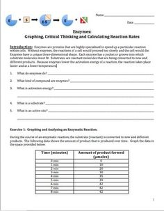 """This is a 6-page graphing activity for students on enzymes and reaction rates of reactions that occur within living cells. This activity serves the dual purpose of reinforcing concepts about enzymes as well as an """"always needed"""" review of graphing. The student will complete 3 separate graphs. Critical thinking and thought provoking questions follow each graph."""