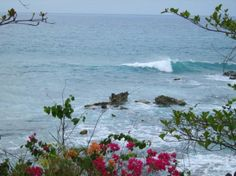 rincon+puerto+rico | Rincon Tourism and Vacations: 29 Things to Do in Rincon, Puerto Rico ...