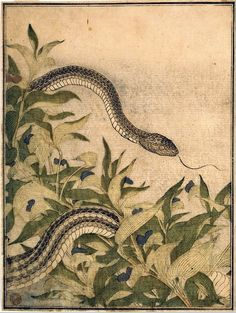 flosvitae:  Kitagawa Utamaro, 1788The Metropolitan Museum of Art