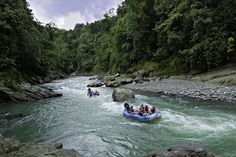 White-Water Rafting (Dominican Republic). 'The Caribbean's only raftable river, the Río Yaque del Norte  in the central highlands, is tailor-made for those looking to recharge their batteries after too much sun and sand. Short but intense series of rapids will get the adrenaline going, as will a spill in the cold roiling river.' http://www.lonelyplanet.com/dominican-republic