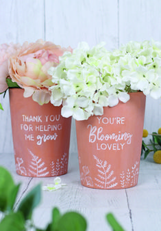 View our exclusive wholesale Mother's Day range 'Botanical Mum' which includes makeup bags, mugs, beautiful terracotta pots and recipe boxes. Recipe Card Boxes, Recipe Cards, Red Company, Autumn Fair, Peach Jelly, Terracotta Flower Pots, Flower Quotes, Color Trends