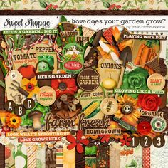 Mary's Garden: How Does Your Garden Grow by Kristin Cronin-Barrow