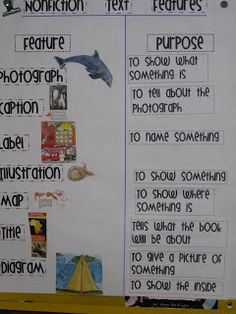 text features- this could be put into a pocket chart and turned into a definition matching activity