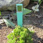 garden markers made with shims