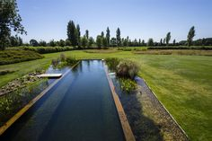 Natural Swimming Ponds, Natural Pond, Outdoor Swimming Pool, Backyard Pool Designs, Ponds Backyard, Garden Pool, Farm Pond, Farm Village, Pool Fountain