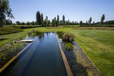 Projecten landelijke zwemvijvers - Projecten - zwemvijver - Watelle