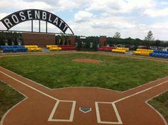 Rosenblatt Stadium today