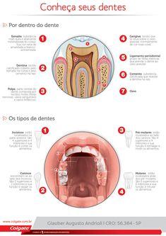 Colgate - Bem Vindo! Dental Life, Dental Health, Oral Health, Health Care, Dental Hygiene Student, Dental Hygienist, Oral Hygiene, Diy For Teens, Diy Projects For Teens