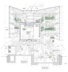 Sectional Perspective-project in Hokkaido by College of Environmental Design UC Berkeley, Kengo Kuma & Associates Coupes Architecture, Architecture Cool, Cabinet D Architecture, Architecture Graphics, Architecture Drawings, Sustainable Architecture, Sustainable Design, Contemporary Architecture, Ancient Architecture