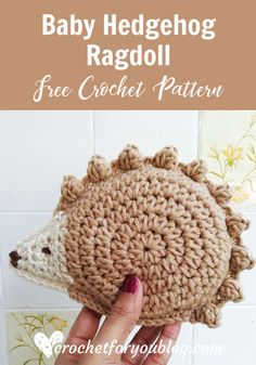 Here is a new member to my amigurumi collection and he is a cute Baby Hedgehog going to join with his Mama Hedgehog. Crochet Baby Hedgehog Ragdoll Amigurumi Free Pattern - Crochet For You Crochet Hedgehog, Baby Hedgehog, Crochet Fall, Cute Crochet, Easter Crochet, Knit Crochet, Crochet Gifts, Crochet Toys, Amigurumi Free