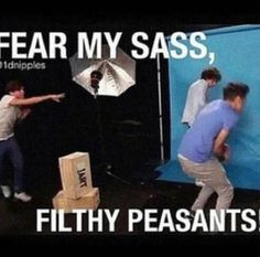 I Louis and his peasants:)