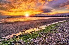 Birch Bay Washington Sunset by C9Photography on Etsy....wow. I did not recognize it. The photographer makes it look so.....different......so glamorous. Ha ha.