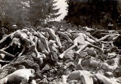 Buchenwald death camp, Germany, Corpses of camp's inmates, after the liberation.