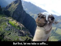 But first, lemme take a selfie