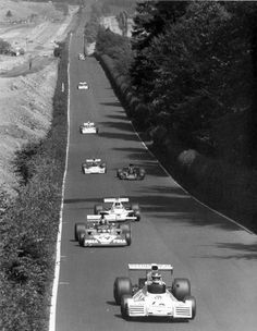 Long straight ….Nurburgring Reutemann, Pace, Hulme, Fittipaldi, Wilson, Mass, Regazzoni, Hailwood….