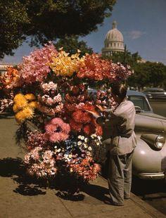 Vintage Cuba, Vintage Landscape, Imagines, Memories, Photo And Video, World, Flowers, Painting, Havana Cuba
