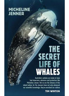 The Secret Life of Whales (book) Secret Life, The Secret, Island Nations, Biologist, Blue Whale, Humpback Whale, Marine Life, New Books, Knowledge