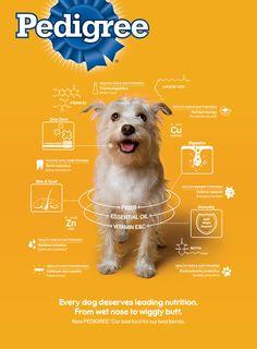 Pedigree - Wiggly Butt on Behance Web Design, Dog Grooming Business, Dog Branding, Best Ads, Social Marketing, Social Media Design, Advertising Design, Animal Design, Design Reference