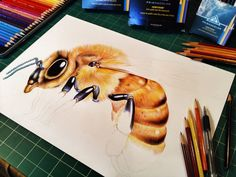 Progress picture 3 of my Honey Bee. Prints and Posters are available in my shop: https://www.etsy.com/listing/245237248/honey-bee-colored-pencil-drawing