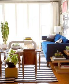 Living room with blue sofa and medium cactus