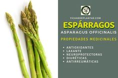 Asparagus, Detox, Food, About Plants, Easy Food Recipes, Beverages, Health, Healing Herbs, Medicinal Plants