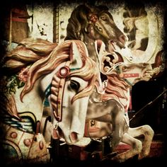 Carousel 4x4 Photograph by KGriffinPhotography on Etsy