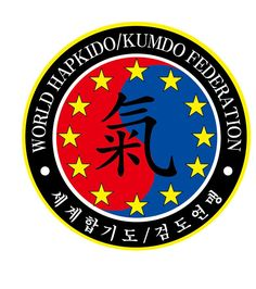 Hapkido, My World, Martial Arts, History, Cool Things, Hs Sports, Martial Art, Historia, History Books