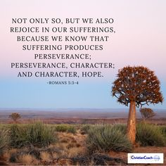"""Not only so, but we also rejoice in our sufferings, because we know that suffering produces perseverance; perseverance, character; and character, hope."""" – Romans 5:3-4 #wordofGod #verseoftheday #CCInstitute Romans 5 3 4, Healing Heart Quotes, Christian Life Coaching, Life Coach Training, Native American Quotes, Spiritual Words, Healing Scriptures, Bible Truth, Verse Of The Day"""