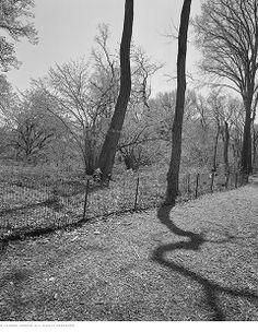 Interview with Award-Winning Landscape Photographer Lauren Henkin