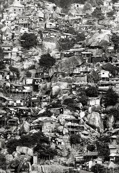Burt Glinn:  Hong Kong, Houses on Hillside  (1961)
