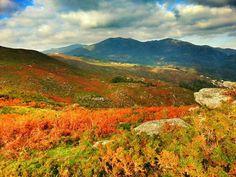 Boa tarde :D As cores do Outono pelos lados de Vilar de Siente Soajo Arcos de. A fotografia é da página Vilar de Suente - http://ift.tt/1H6qZ5Z