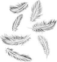 Tattoos That Will Bring Out the Awesomeness in You feather tattoo tattoo 2 White Feather Tattoos, Small Feather Tattoo, Feather Drawing, Feather Tattoo Design, Feather Art, Head Tattoos, Time Tattoos, Finger Tattoos, Body Art Tattoos