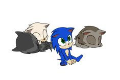 Pup Sonic and his littermates (two males and a female) The Runt Sonic Funny, Sonic 3, Hedgehog Movie, Sonic The Hedgehog, Next Avengers, Sonic The Movie, Silver The Hedgehog, Sonic Fan Characters, Sonic And Shadow