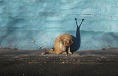 Alexey Menschikov turns the urban landscape into stunning art