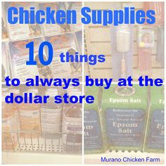 Murano Chicken Farm: 10 Chicken Supplies you can find at the Dollar Store